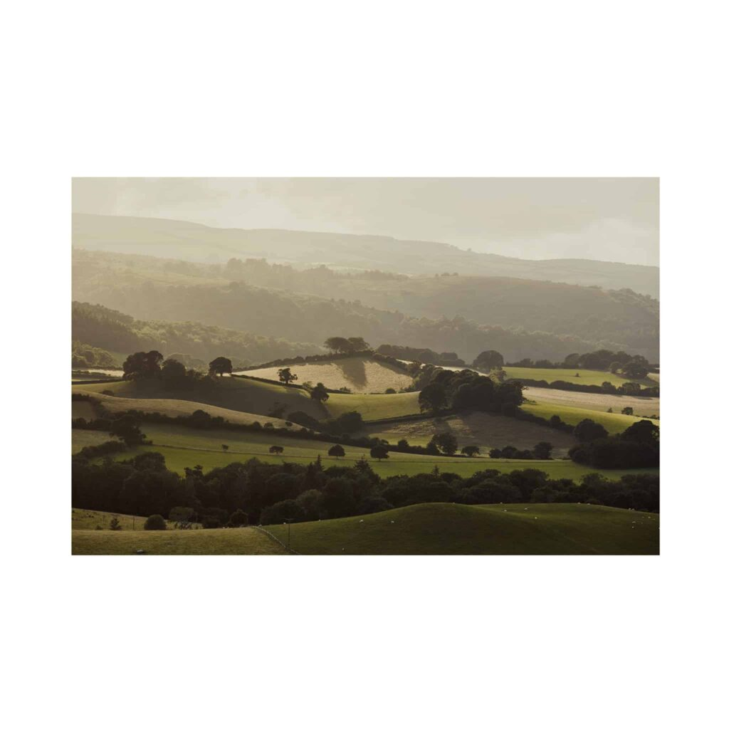 Exmoor, North Devon Print by Tom Shaw