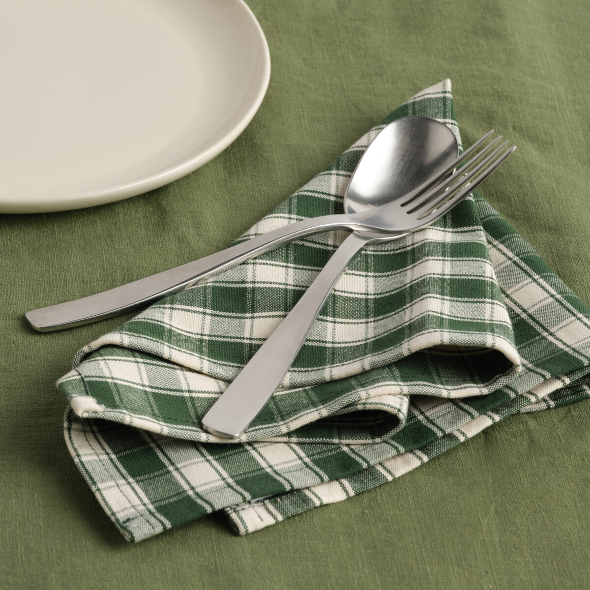 Green Checked Napkin 002